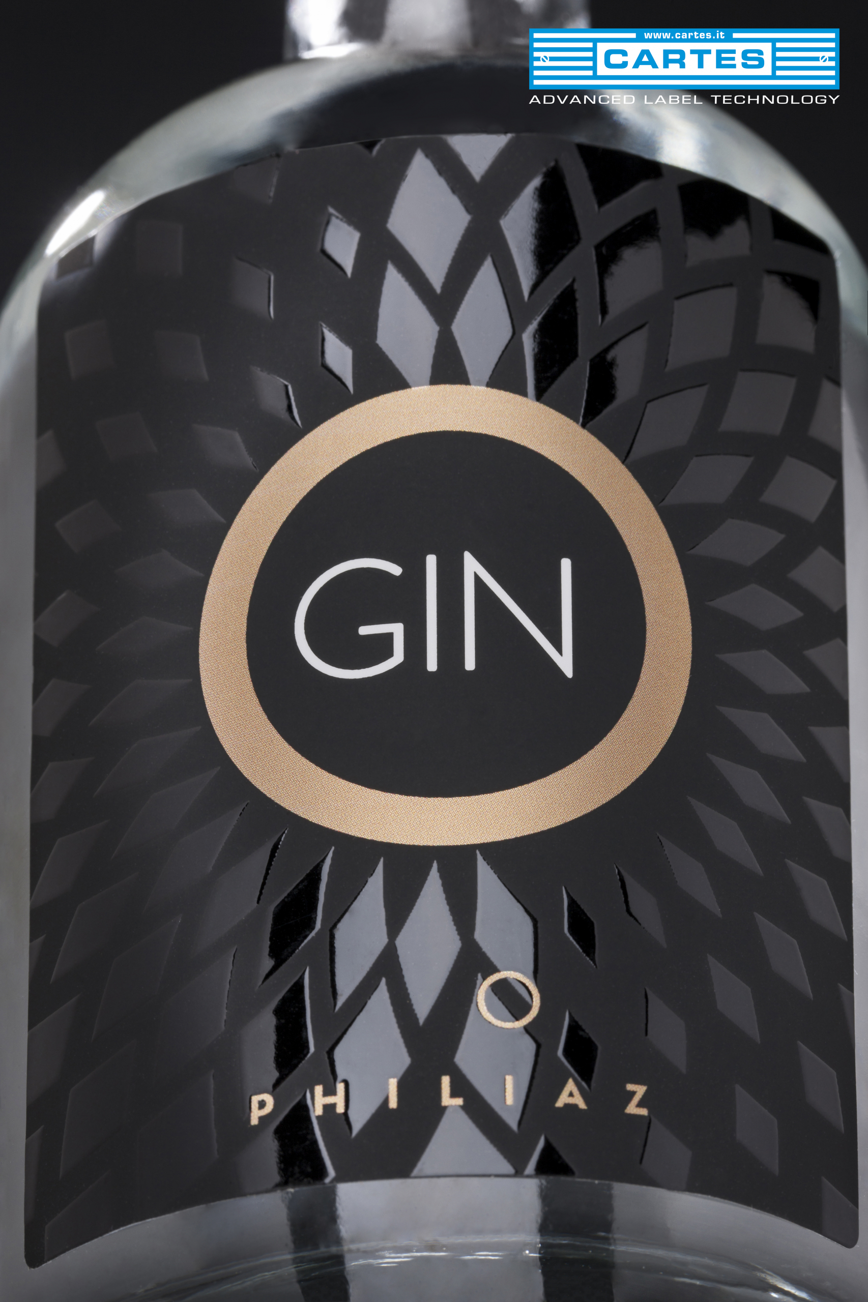 Gin-DS1011
